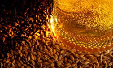 Cerveza México, una ventana para el conocimiento