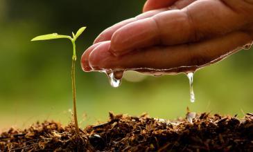 Reporte de Sostenibilidad de HEINEKEN: logros en agua, CO2 y más