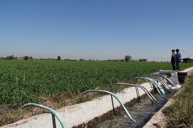 Comienza el año con un consumo sustentable de agua